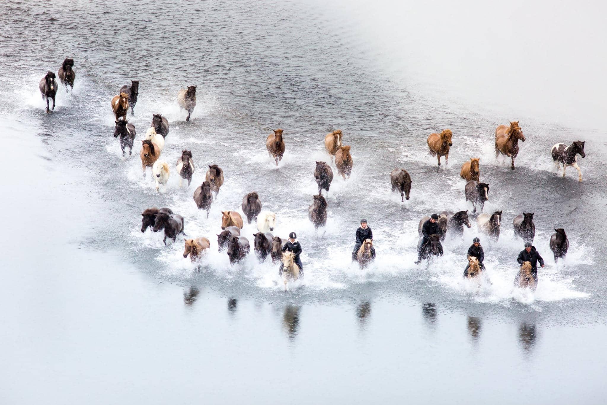 Löngufjörur