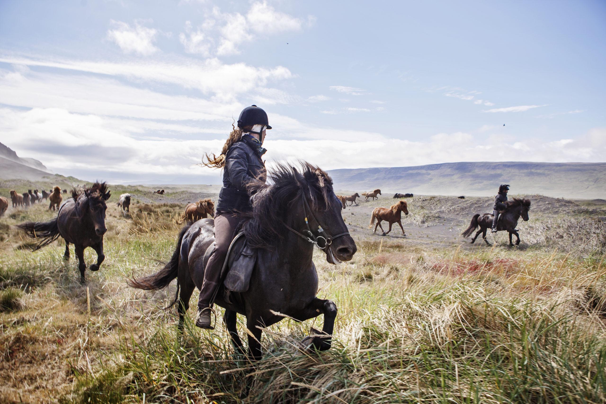 Viking Women Trail Tophorses